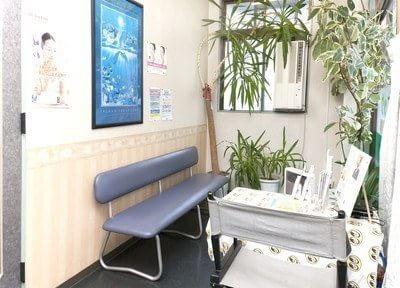 待合室には緑の植物をたくさん設置しています。