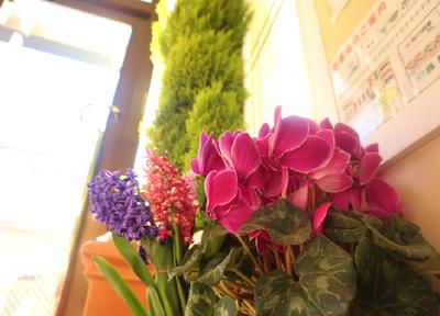 色鮮やかな花がお出迎えします。