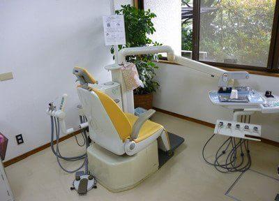 診療室にも植物を置いています。リラックスしてご受診ください。