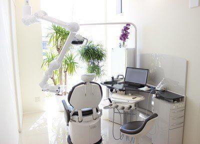診療室です。観葉植物も飾られていてリラックスできる空間になっています。