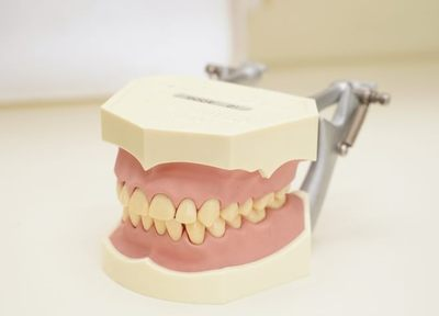 院長が患者さま一人ひとりに合った入れ歯・義歯を作っている