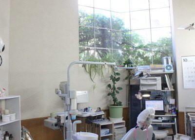 診療室には大きな窓があり、光が差し込みます。