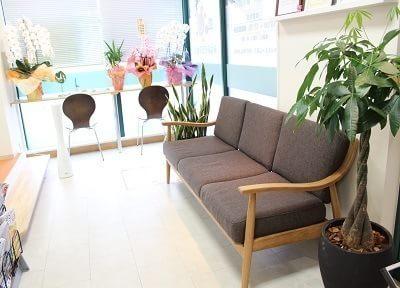待合スペースです。診療前後はこちらのソファでおくつろぎください。