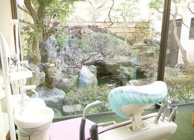 診療台から内庭が望めます。季節の移り変わりを楽しんでください。