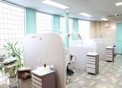 診療室です。チェアごとに区切っているため、患者様のプライバシーを出来る限りお守りしております。