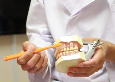 歯周病治療は免疫力を上げて、細菌量を減らすこと。歯茎のケアも行い、お口の状態を改善に導きます