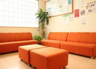 明るい待合室となっております。リラックスしてお待ち下さい。