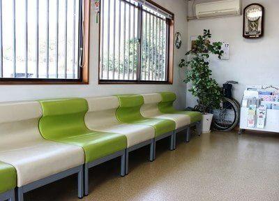 待合室です。明るい光が差込み、気持ちよくお待ちいただけます。