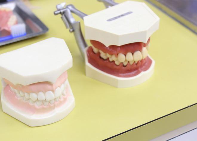 寒竹ファミリー歯科5