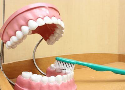 有山よしのぶ歯科医院6