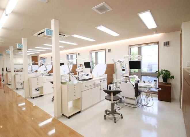 桜木歯科医院