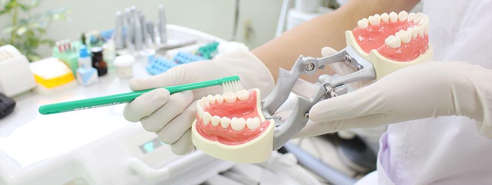 歯の磨き方の指導
