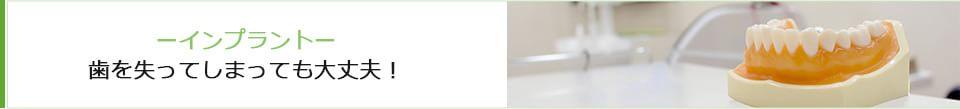南流山リーフ歯科クリニック|南流山リーフ歯科クリニックの特徴 3