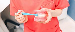 ハレノテラス歯科・矯正歯科 ハレノテラス歯科・矯正歯科の特徴 2