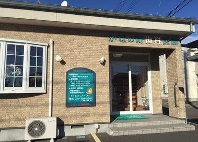 かばの町歯科医院の医院写真