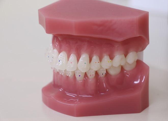 月島矯正歯科7