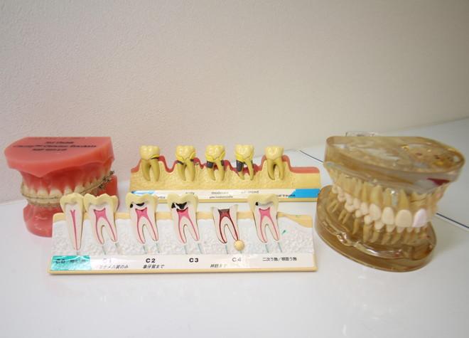 イナグマ歯科5