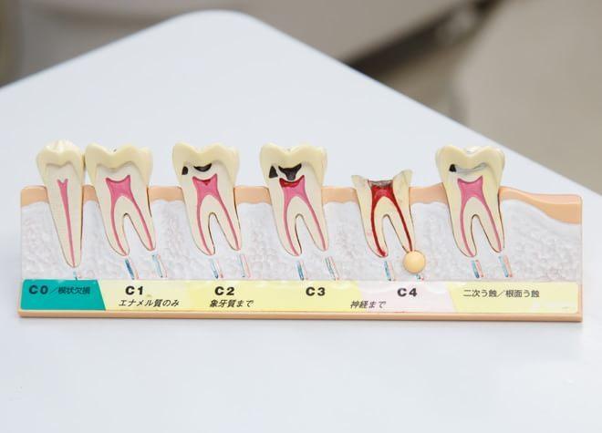 美馬歯科3
