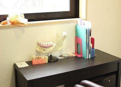 歯の模型が置いてあります。