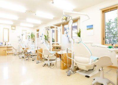 診療室です。広い空間を使ったリラックスできる空間です。