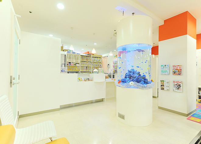 ソフト歯科_医院写真2