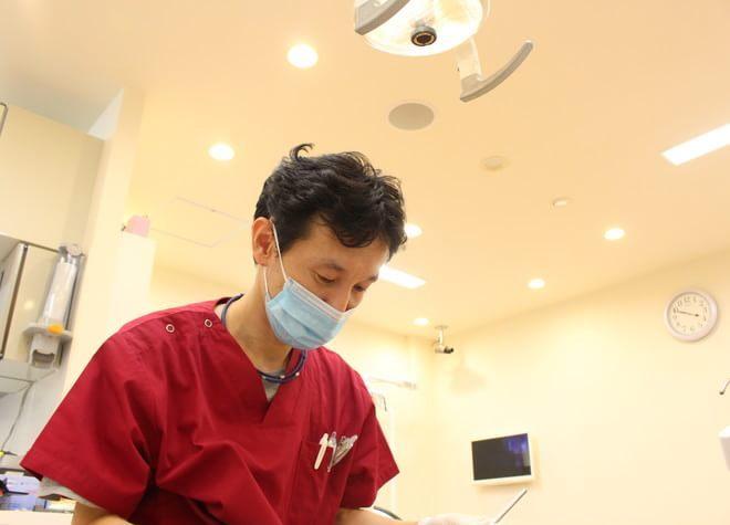医療法人たんぽぽ会歯科 みと院5