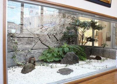 待合室からは中庭を見ることができ、リラックスしていただける環境作りをしています。