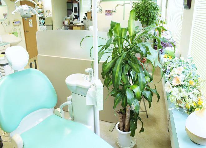 ハーブ歯科矯正歯科クリニック2