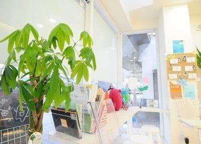 待合室には植物を置いています。リラックスしてお待ちください。