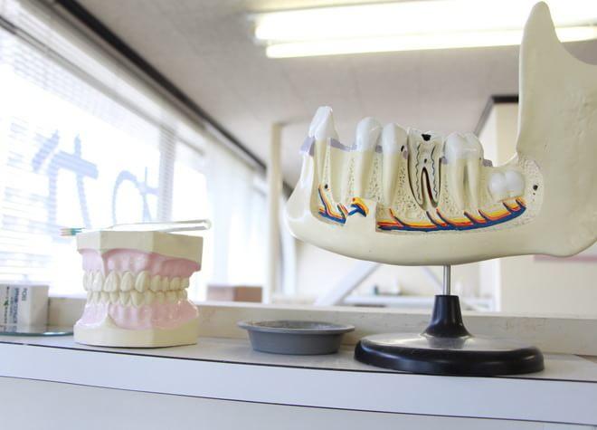 わかすぎ歯科4