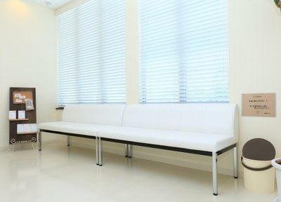 待合室です。診療前後はお掛けになってリラックスしてお待ちください。