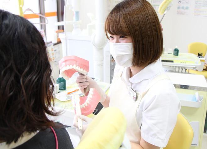歯周病を治し、再発しないように予防管理のためのレッスン