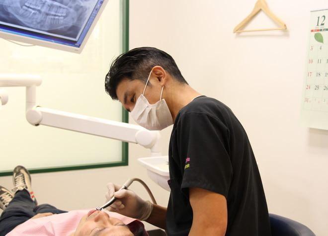 プルメリア歯科2